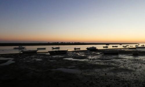 Zdjęcie PORTUGALIA / Algarve / Tavira/ Santa Luzia / zachód słońca nad Rio Formosa