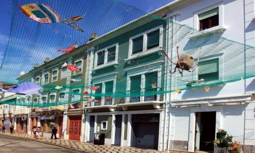 Zdjęcie PORTUGALIA / Baixo Vouga / Aveiro  / Morskie opowieści