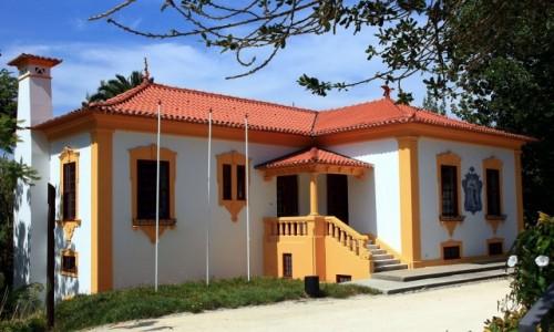 Zdjęcie PORTUGALIA / Aveiro / Park miejski / Kolorowy domek