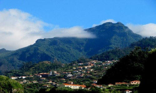 PORTUGALIA / Madera / okolice Sao Vicente / terasy