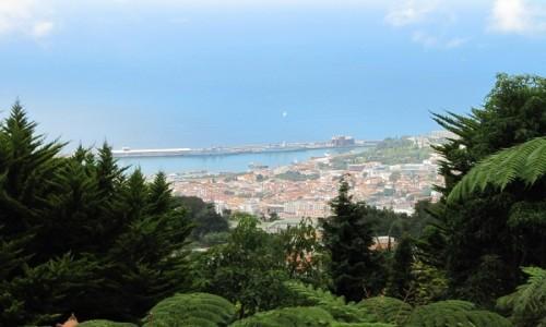Zdjecie PORTUGALIA / Madera / Funchal / Widok z góry Monte