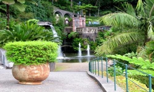 PORTUGALIA / Madera / Funchal / Ogród na górze Monte