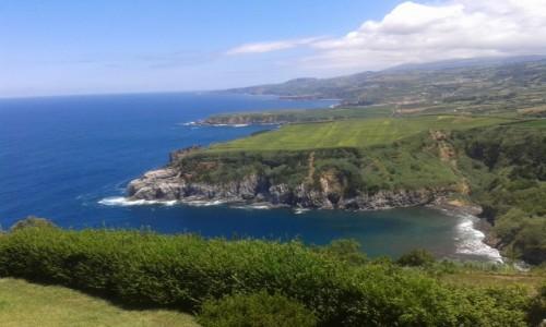 Zdjęcie PORTUGALIA / Azory / Sao Miguel / Wybrzeże