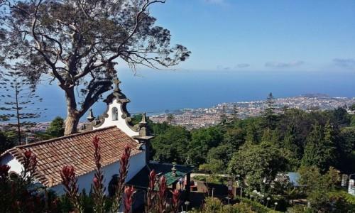 Zdjecie PORTUGALIA / Funchal / Botanical Garden / Funchal z Botanical Garden