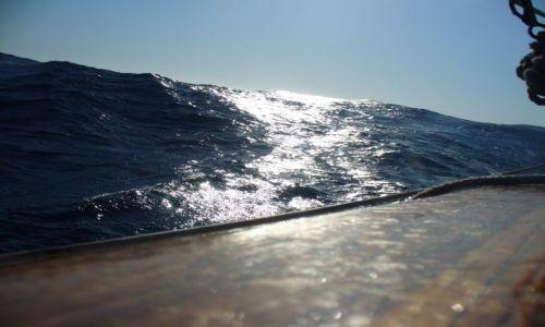 Zdjecie PORTUGALIA / Atlantyk / okolice Azorów / Fala atlantycka