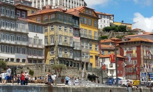 Zdjecie PORTUGALIA / Douro Litoral / Porto / Pastele Ribeiry