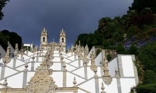 Zdjecie PORTUGALIA / Minho / Braga-sanktuarium Dobrego Jezusa na Górze (Bom Jesus do Monte) / Bez badyla (za to z agapantami)