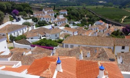 Zdjecie PORTUGALIA / Leiria / Obidos / Z wysokości