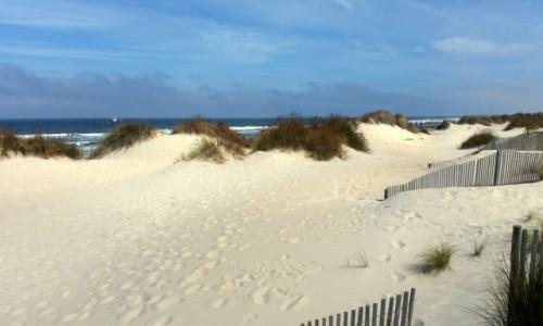 Zdjecie PORTUGALIA / Baixo Vouga / Costa Nova / Z poziomu morza (a nawet oceanu)