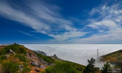 Zdjecie PORTUGALIA / Madera / Paul da Serra / Madera - ponad chmurami
