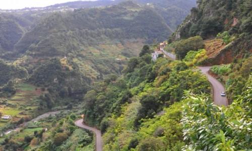 Zdjecie PORTUGALIA / Madera / północny wschód / Wiecznie zielona Madera