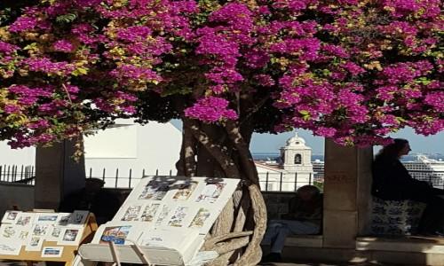 Zdjecie PORTUGALIA / Lizbona / Miradouro de Santa Luzia / Lisbon story