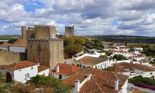 Zdjecie PORTUGALIA / Centrum, dystrykt Leiria / Óbidos / Dachy Óbidos