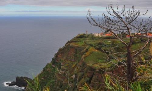 Zdjecie PORTUGALIA / Madera / północno-wschodnie wybrzeże / Mieszkać nad urwiskiem