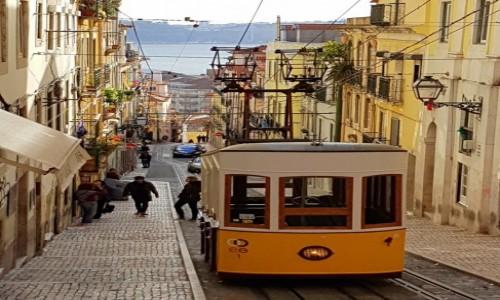 Zdjecie PORTUGALIA / Lizbona / Lizbona / Elevador da Bica