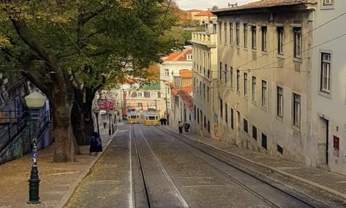 Zdjęcie PORTUGALIA / - / Lizbona / Elevador da  Glória