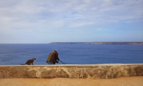 Zdjęcie PORTUGALIA / Algarve / Sagres-widok na Cabo São Vicente / No co? Czekam na ryby!