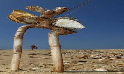 Zdjecie PORTUGALIA / Algarve / Pedras del Rei / wędrówki plażą4