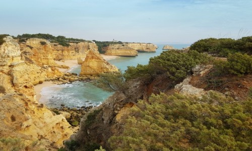Zdjecie PORTUGALIA / Algarve /  Portimão / Praia da  Rocha