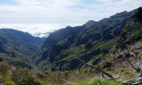 Zdjecie PORTUGALIA / Madera / na górskim szlaku / Madera