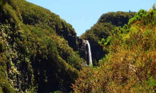 Zdjęcie PORTUGALIA / Madera / Madara Centralna / krajobrazy Madery