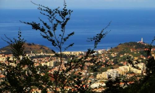 Zdjecie PORTUGALIA / Madera / Funchal / panorama Funchal ze wzgórza Monte
