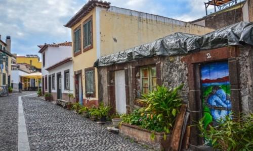 Zdjecie PORTUGALIA / Madera / Funchal / Funchal