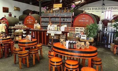 Zdjęcie PORTUGALIA / Madera / Funchal / winiarnia