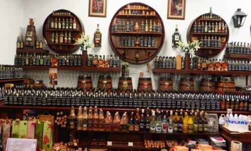 Zdjecie PORTUGALIA / Madera / Funchal / winiarnia