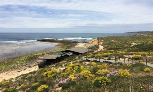 Zdjecie PORTUGALIA / Alentejo / Vila Nova de Milfontes / na wybrzeżu...