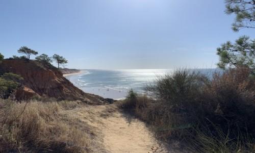 Zdjecie PORTUGALIA / Algarve  / Playa Falesia  / Portugalskie klify