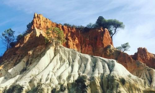 Zdjecie PORTUGALIA / Algarve  / Playa Falesia  / Cudowna Portugalia
