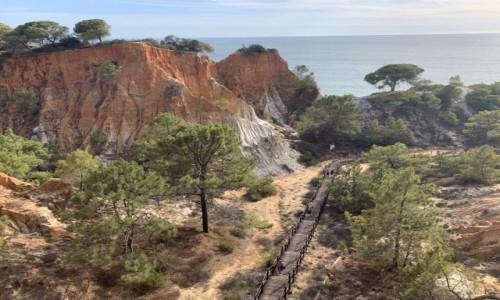PORTUGALIA / Algarve / Playa Falesia  / Rajski widok