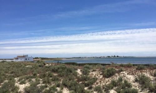 Zdjecie PORTUGALIA / Algarve / Ria Formosa Natural Park, Olhao / od Mana Rota do Vale do Lobo...