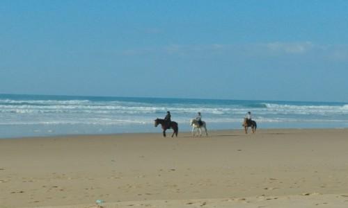 Zdjecie PORTUGALIA / Algarve / Praia da Cordoama / Portugalia poza sezonem