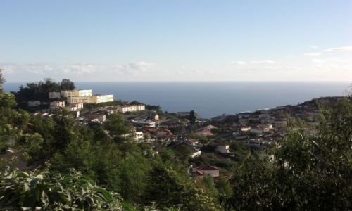 Zdjecie PORTUGALIA / brak / Madeira - Funchal / Widok na Ocean