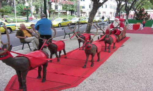 Zdjęcie PORTUGALIA / brak / Madeira - Funchal / Święty Mikołaj i reniferki...