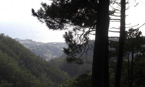 Zdjecie PORTUGALIA / brak / Madeira - Funchal / Góry 4