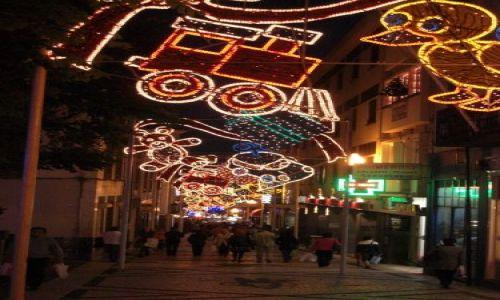 Zdjecie PORTUGALIA / brak / Madeira - Funchal / Uliczki ozdobione na święta