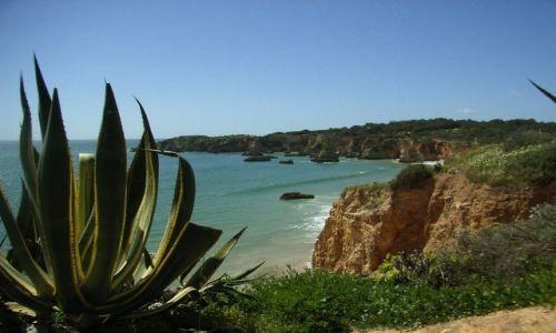 Zdjecie PORTUGALIA / Algarve / Praia da Rocha / Plaże Portugalii