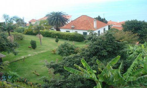 Zdjecie PORTUGALIA / Madeira / Madeira / Piękny ogród