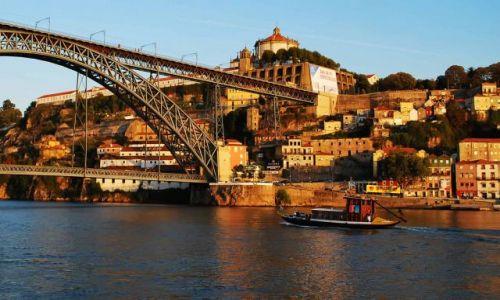 Zdjecie PORTUGALIA / Grande Porto / Porto / Złote Porto