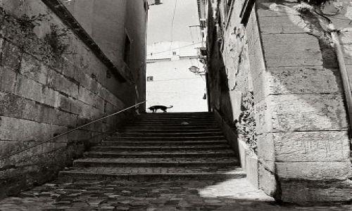 Zdjęcie PORTUGALIA / Lizbona  / Alfama / uliczki Alfamy 1