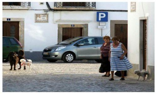 Zdjecie PORTUGALIA / Algarve / bliżej nieokreślone / Niektórzy...