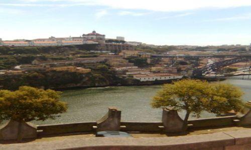 Zdjecie PORTUGALIA / Porto / Porto / Porto