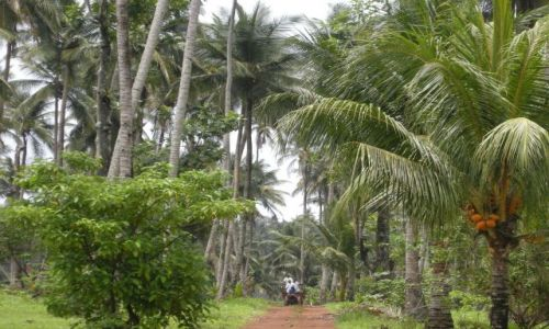 REPUBLIKA ŚRODKOWEJ AFRYKI / Sao Tome / Sao Tome / ...