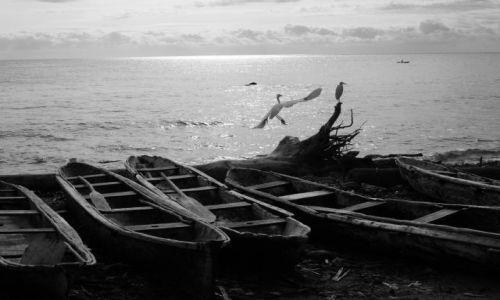 Zdjecie REPUBLIKA ŚRODKOWEJ AFRYKI / Sao Tome / Rolas / ...