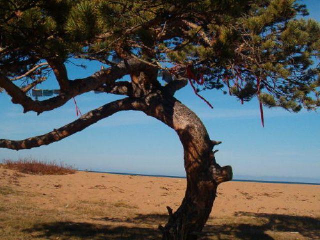 Zdjęcia: Jezioro Bajkał, Bajkał_, ROSJA