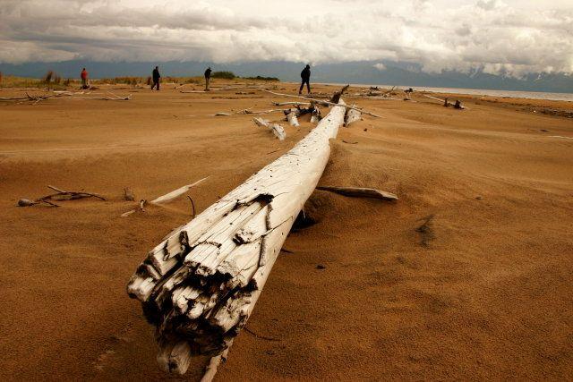 Zdj�cia: Delta G�rnej Angary, Zabajkale, L�dujemy na wydmach, ROSJA