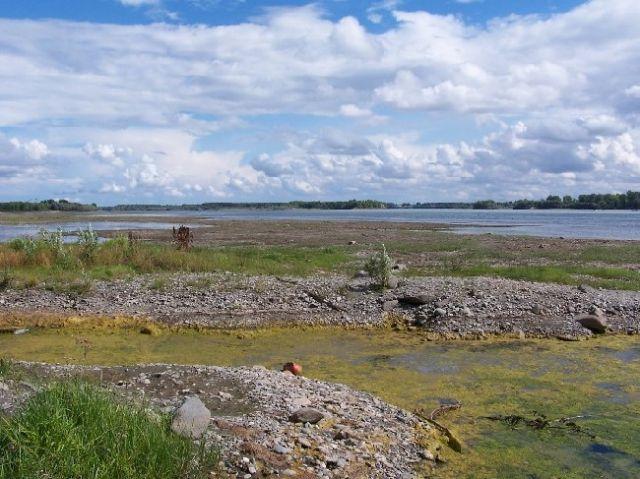 Zdjęcia: rzeka Ob, Syberia, Koniec sierpnia to też koniec słonecznego lata, ROSJA